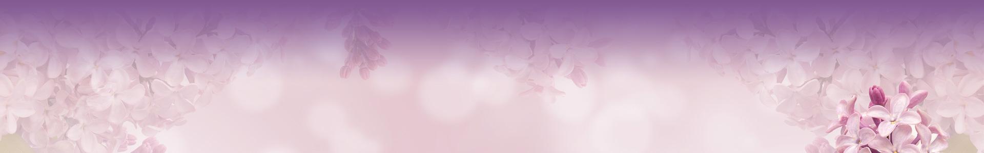 Brautkleid TW0013B - kurz Chiffon Spitze Ärmel Standesamt schlicht V-Ausschnitt